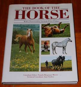Image for The Book of the Horse