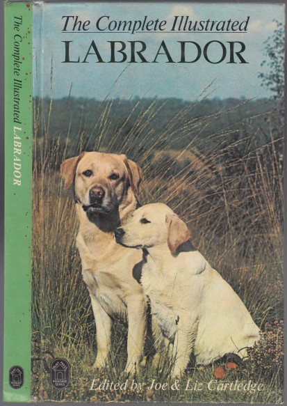 Image for The Complete Illustrated Labrador