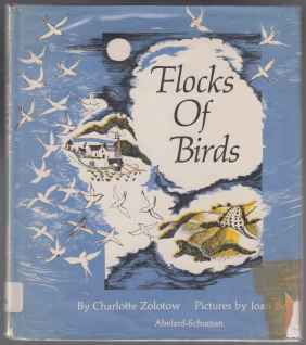 Image for Flocks Of Birds