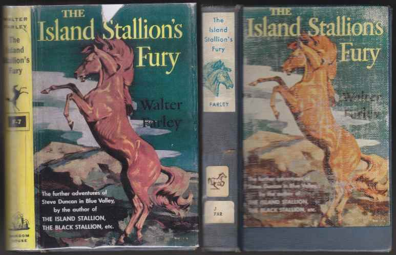 Image for The Island Stallion's Fury