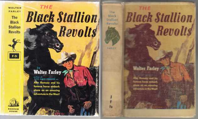 Image for The Black Stallion Revolts