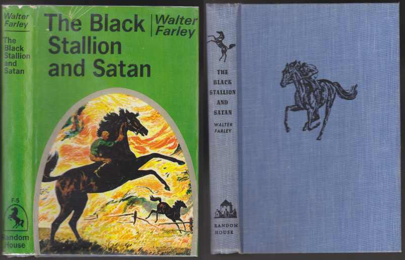 Image for The Black Stallion and Satan
