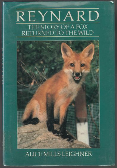Image for Reynard  The Story of a Fox Returned to the Wild