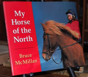 Image for My Horse of the North