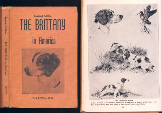 Image for The Brittany In America