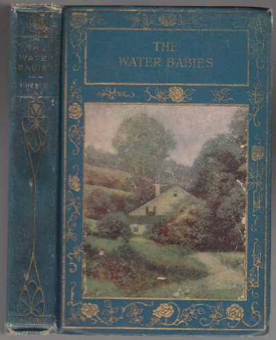 Image for The Water Babies  A Fairy Tale For A Land-Baby