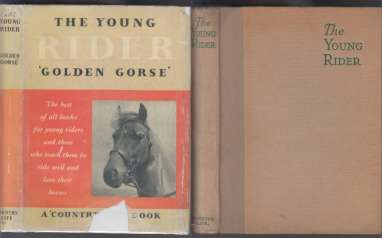 Image for The Young Rider