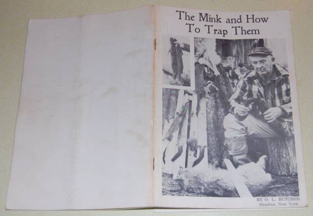 Image for The Mink and How To Trap Them