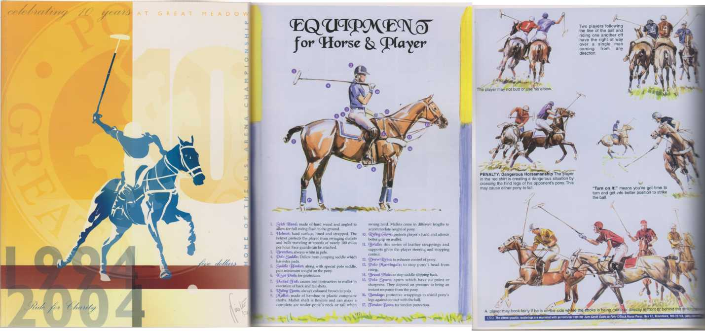 Image for Polo at Great Meadow, The Plains VA 10 Yr Anniversary Book
