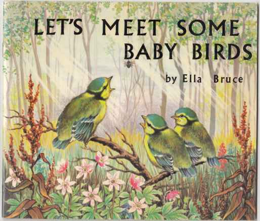 Image for Let's Meet Some Baby Birds