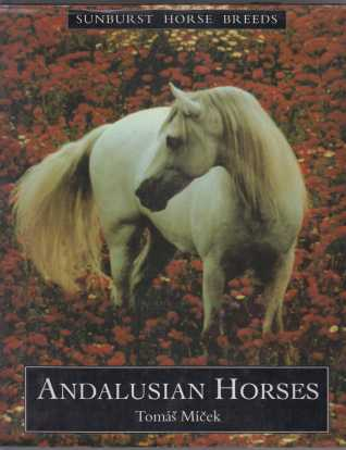 Image for Andalusian Horses