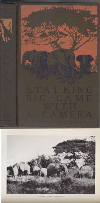 Image for Stalking Big Game With A Camera In Equatorial Africa With A Monograph on the African Elephant