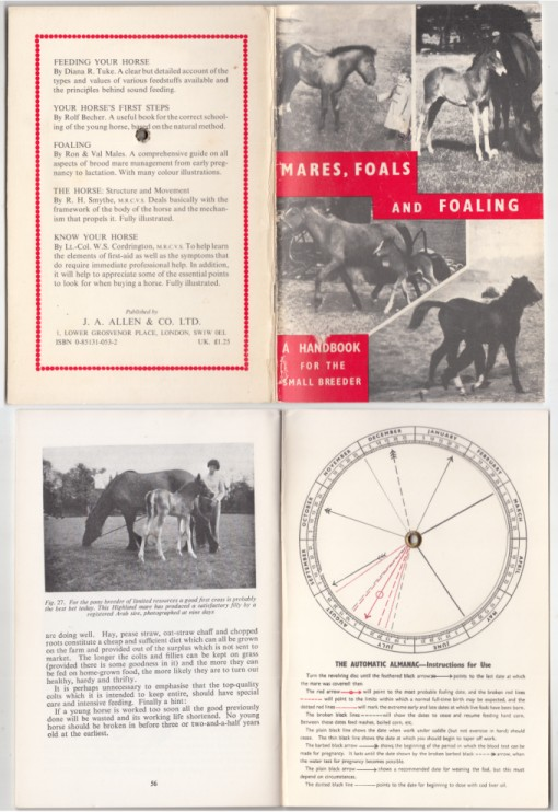 Image for Mares, Foals and Foaling A Handbook for the Small Breeder