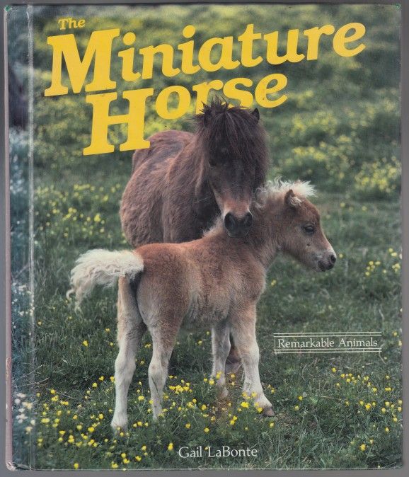 Image for The Miniature Horse A Dillion Remarkable Animals Book