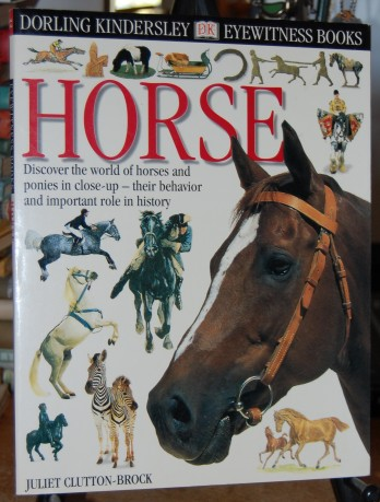 Image for Horse  Discover the World of Horse and Pony in Close-Up - Their Behavior and Important Role in History