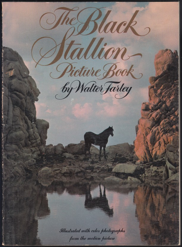 Image for The Black Stallion Picture Book
