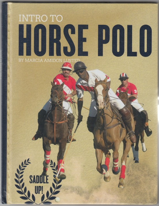 Image for Intro To Horse Polo