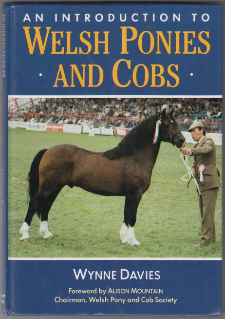 Image for An Introduction to Welsh Ponies and Cobs