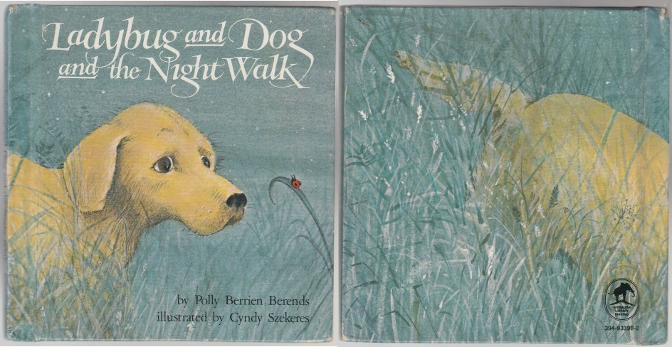 Image for Ladybug and Dog and the Night Walk