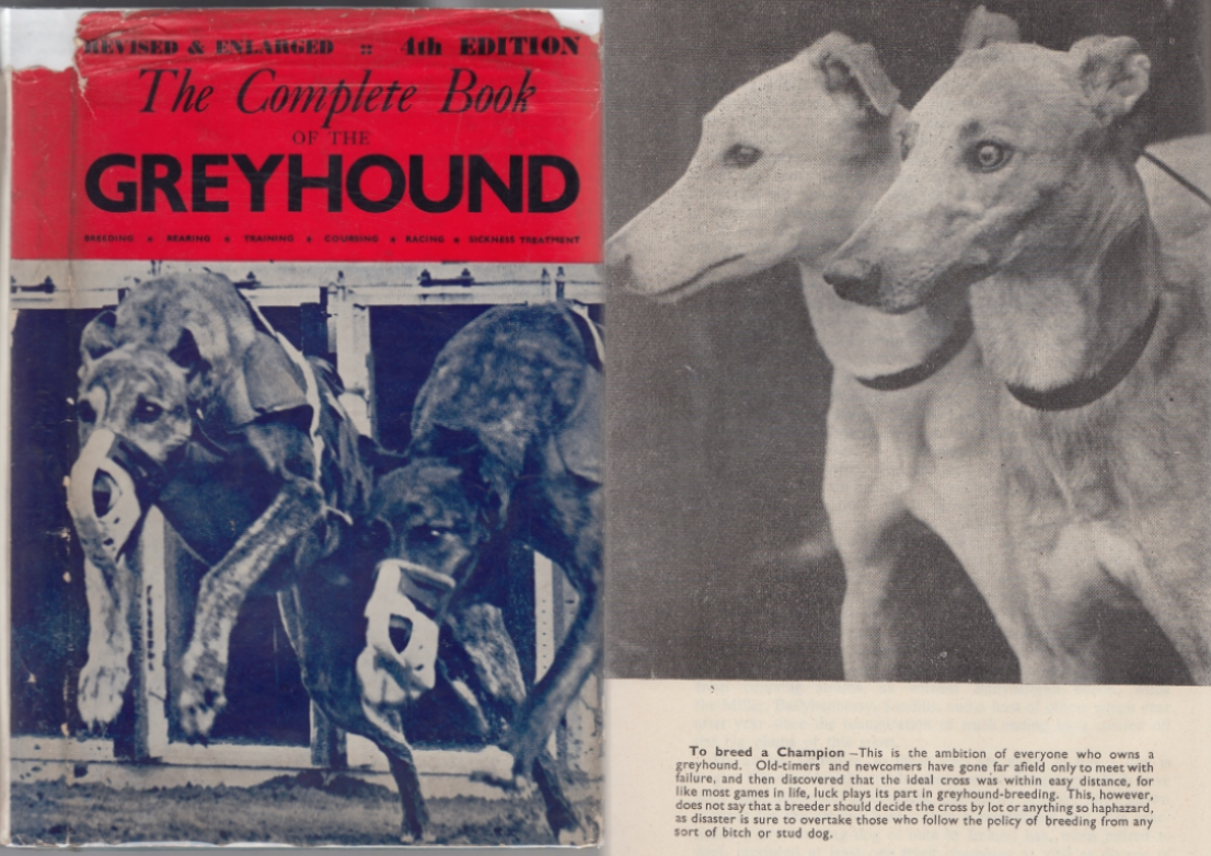 Image for The Complete Book of the Greyhound Including Special Articles on the Greyhound in Ireland, Great Britain, United States of America, Australia and France  Revised & Enlarged 4th Edition