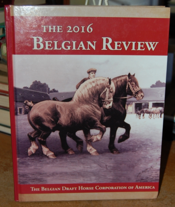 Image for The 2016 Belgian Review