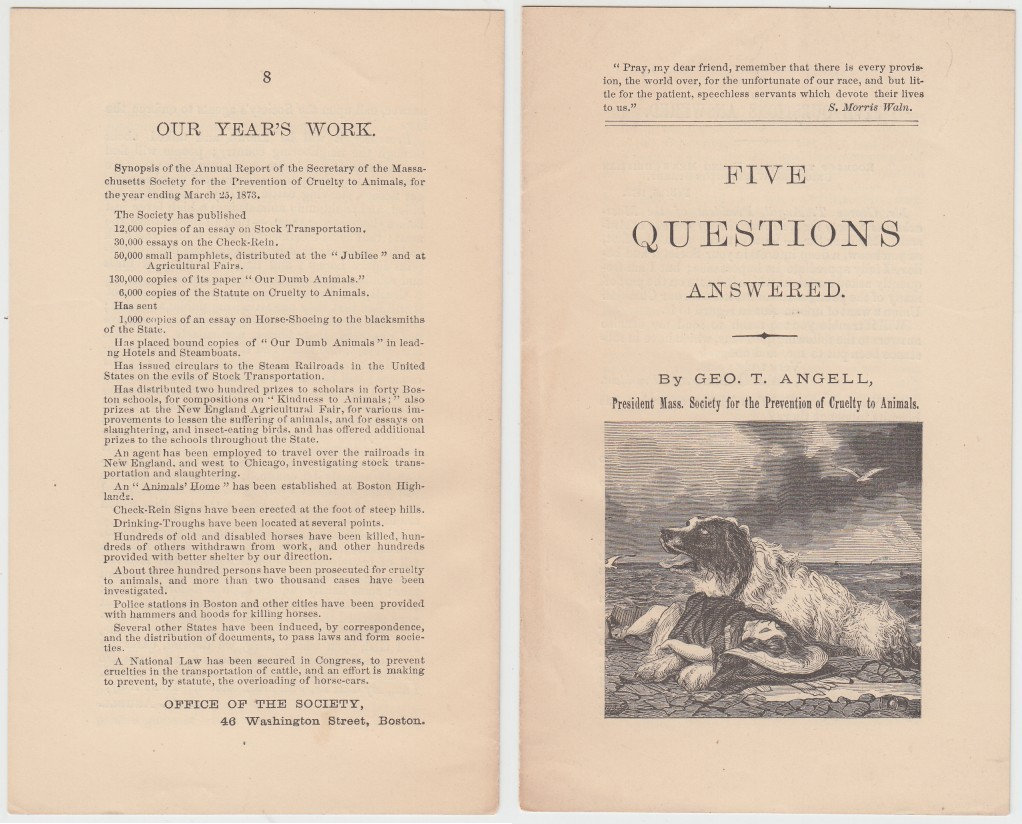 Image for Five Questions Answered