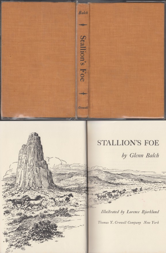 Image for Stallion's Foe