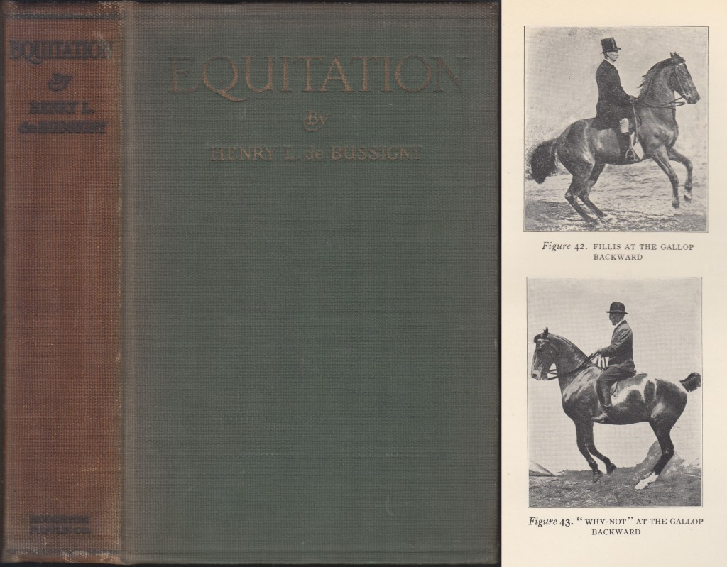 Image for Equitation